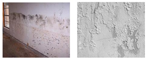 Como solucionar la humedad de las paredes casa fija - Como tratar la humedad en las paredes ...